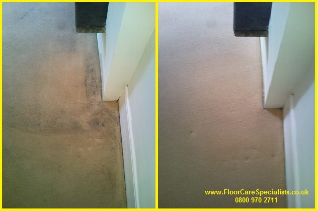 professional carpet cleaning in Leicester from Baileys Floorcare Specialists