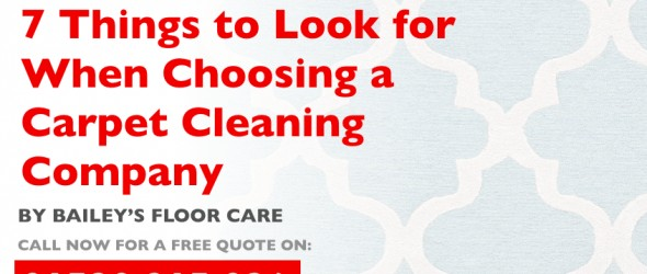 7 Things to Look for When Choosing a Carpet Cleaning Company